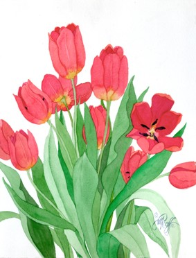 Red Tulips #3
